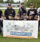 Ironbirds